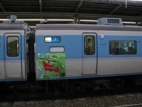 2008_04_19_0260005
