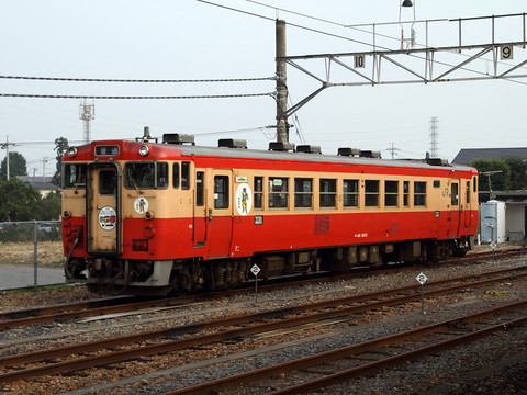 Img_7d19749s