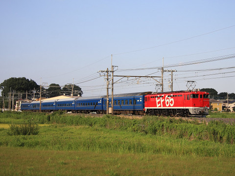 Img_d11056s_1