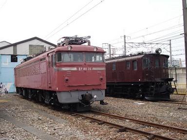 IMGP2619