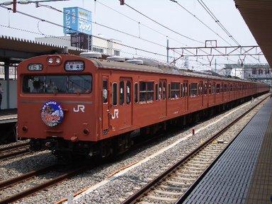 IMGP2956