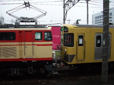 IMGP3166