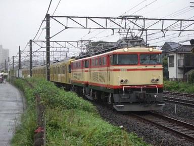 IMGP3173