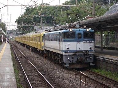 IMGP3194