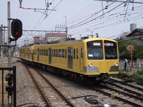 IMGP3562