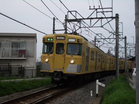IMGP3611