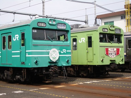 IMGP3903