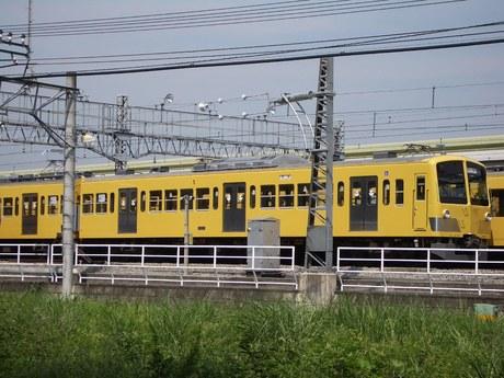 IMGP4320