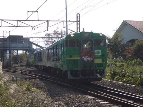 IMGP5235