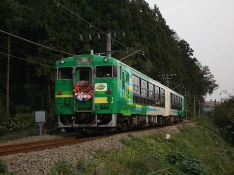 IMGP5256