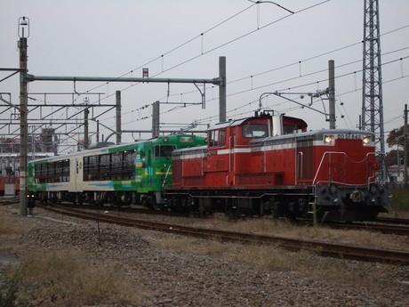 IMGP5263