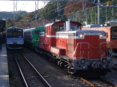 IMGP5288
