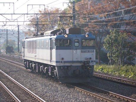 IMGP5421