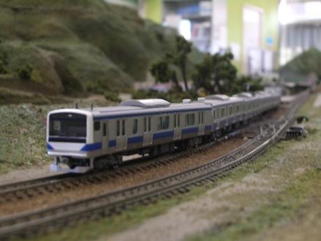IMGP5815