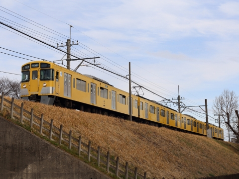 Img_6d19467s